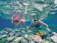 great-barrier-reef-underwater