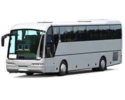 bus charter service sydney - 49 seat bus