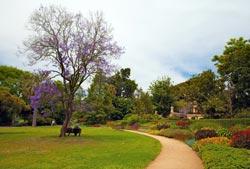 Melbournes-Botanical-Gardens