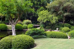 The Japanese Garden In Brisbane